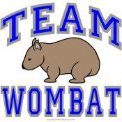 Team Wombat II