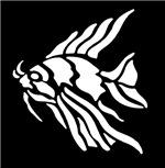 White Tiger Fish