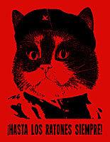 Cat Revolutionaries