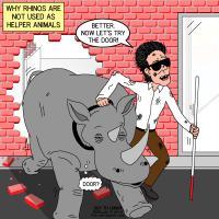 Rhino Helper