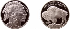 Both sides 2001 Silver Indian/Buffalo Coin White