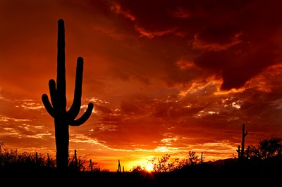 Beautiful Arizona