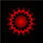 Red  Sun Flower
