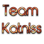 Team Katniss (flames)