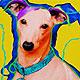 Louie: Italian Greyhound