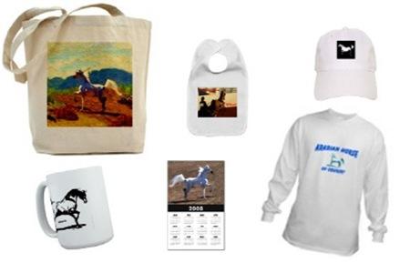 AFTM Arabian Horses