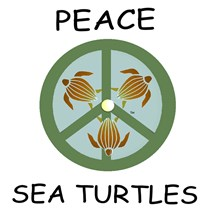 SEA TURTLE PEACE