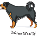Tibetan Mastiff T-shirt, Tibetan Mastiff T-shirts
