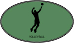 Mens Volleyball (euro-green)