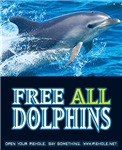 Free All Dolphins