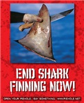 End Shark Finning