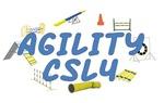 CSL4 Agility Title