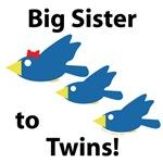 Big Sister to Twins!