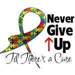 Never Give Up - Autism