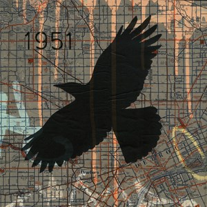 Street Art Crow