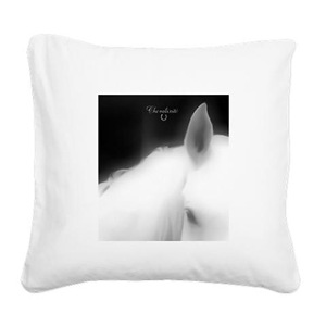 Square Canvas Pillows