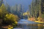 Flowing thru Autumn