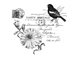Flower & Bird Carte Postale