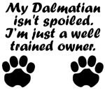 Well Trained Dalmatian Owner