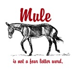 Mule is not a four letter word.