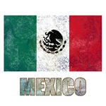 Distressed Mexican Flag T-Shirts