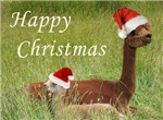 Mother and Baby Alpaca Christmas