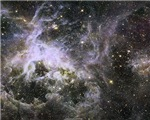 Creepy-crawly Tarantula Nebula
