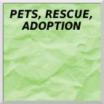 Pets, Rescue, Adoption, Spay/Neuter