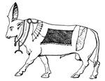 Eqyptian Sacred Bull