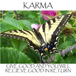 Butterfly Karma