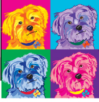 YORKSHIRE TERRIER ART