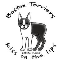 Boston Terriers Kiss on the Lips II