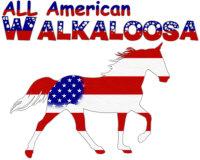 All American Walkaloosa