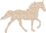 TWH Made with the WORDS Tennessee Walking Horse