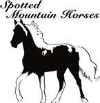 Spotted Mountain Horses!