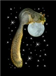 Squirrel on the Moon