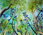 Buzzing through the Bluebells