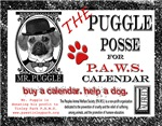Puggle Posse for P.A.W.S. Calendar
