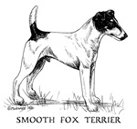Smooth Fox Terrier items with this design