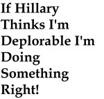 Hillary deplorable