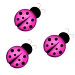 Pink Black Ladybugs