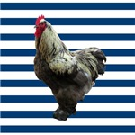 Rooster on Blue Stripes