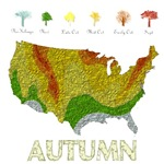 Fall Folige Map