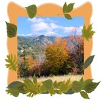 Mt. Killington Fall Foliage