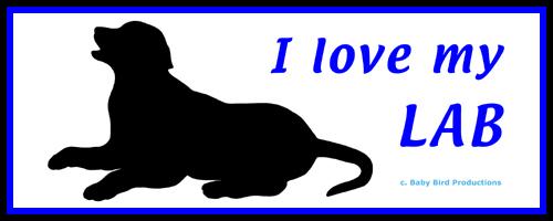I LOVE MY DOG - LAB