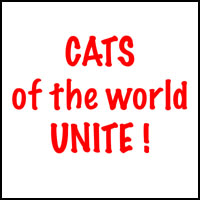 CATS UNITE T-SHIRTS & GIFTS