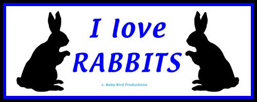 RABBIT T-SHIRTS & GIFTS