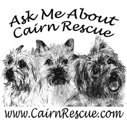 Ask Me About Cairn Rescue