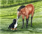Bernese Mountain Dog Pup and Horse Buddy
