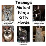 Teenage Mutant Ninja Kitty Horde